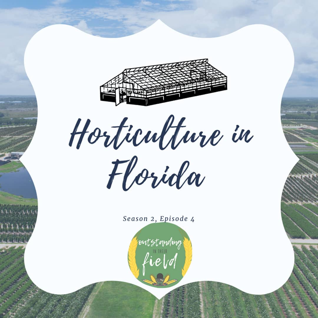 Horticulture in Florida